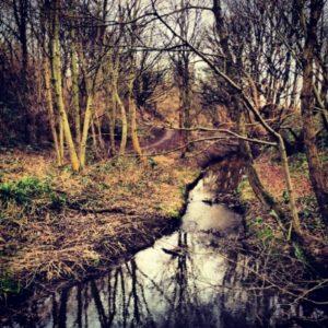leeds river