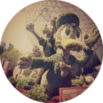 Day 8 – Epcot
