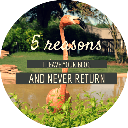 Top blog tips