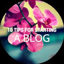 top blog tips