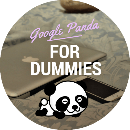 google panda for dummies