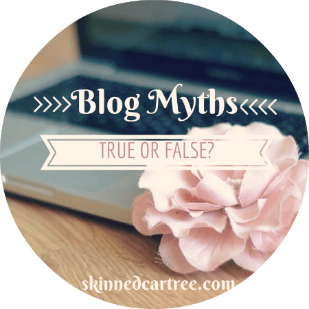 Blogging Myths // True or False?