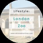 London Zoo and The Okapi