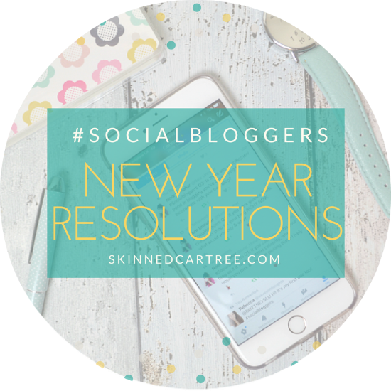 new years resolutions and blog goals