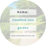 Tips on How to Transform Your Garden