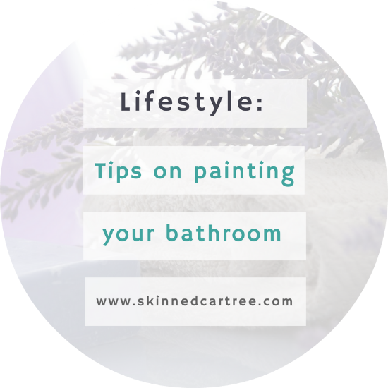 5 Tips to Painting Your Bathroom