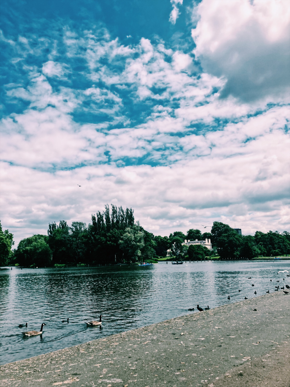 My London Adventure
