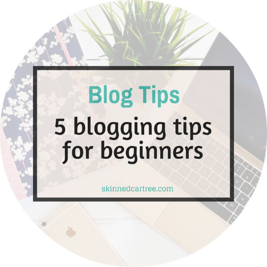 5 Beginners Tips to Make A Blog Successful