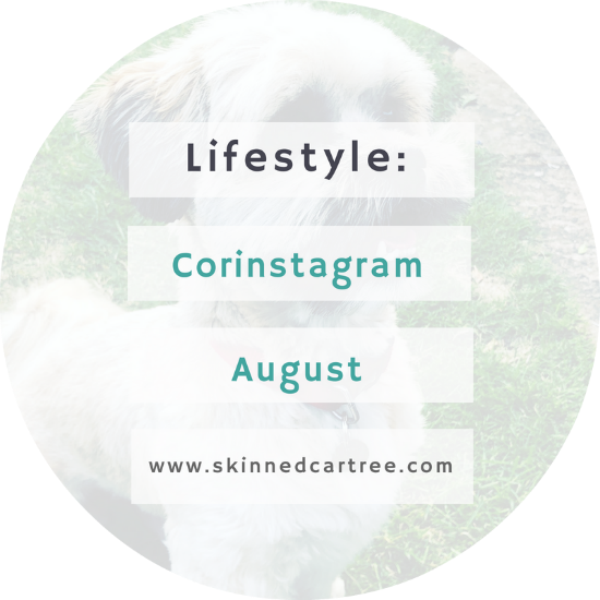 york blogger instagram