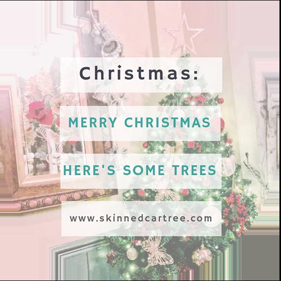 Christmas Trees of 2018 MERRY CHRISTMAS
