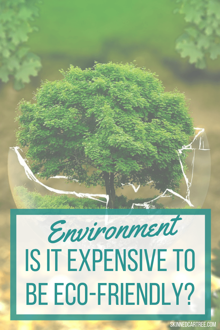 Is is expensive to be eco friendly?