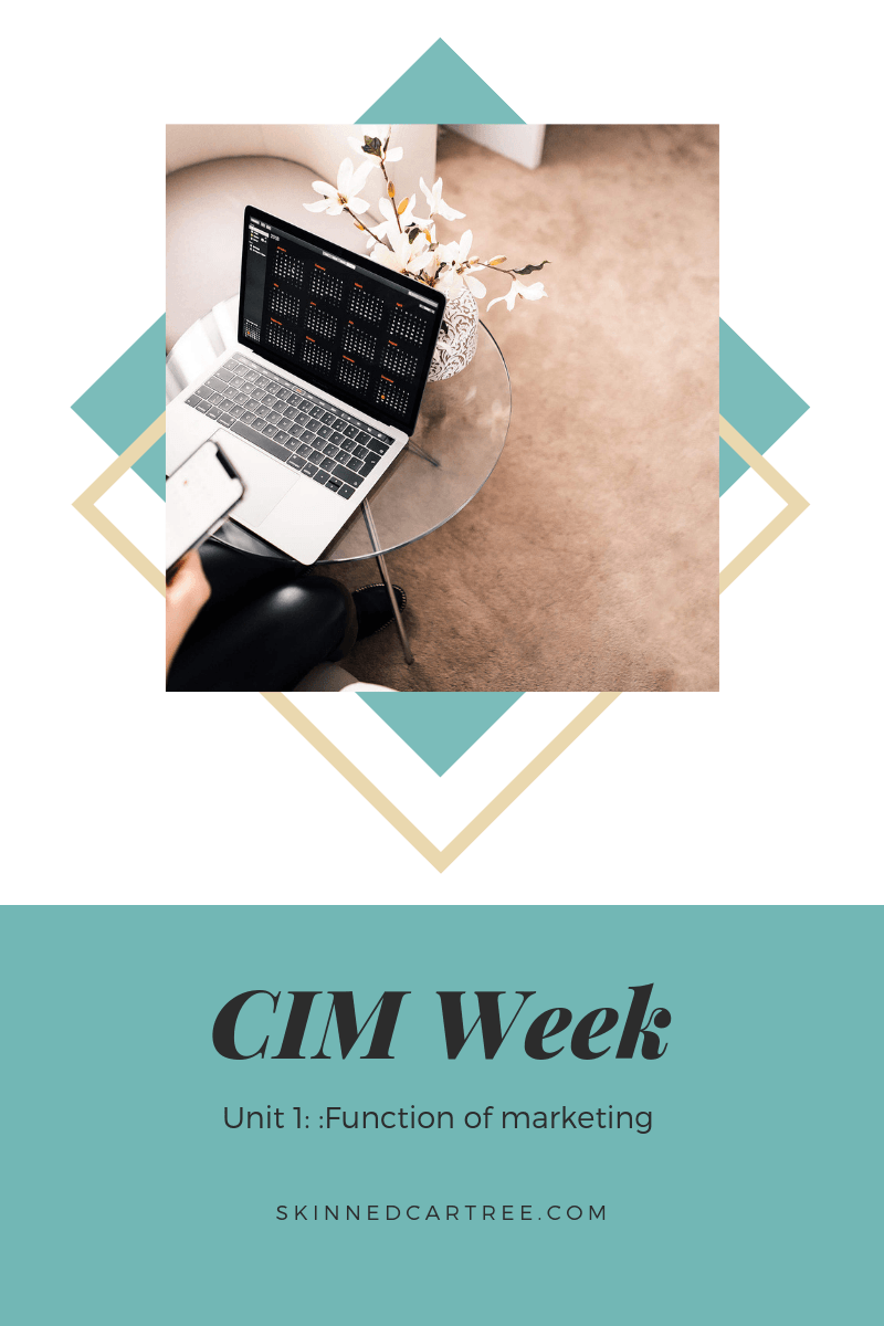 Notes for CIM Certificate in Professional Marketing Unit 1