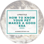 How to know your pet makes a good ESA