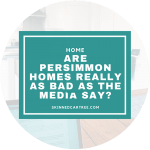 Are Persimmon Homes really as bad as the media say?
